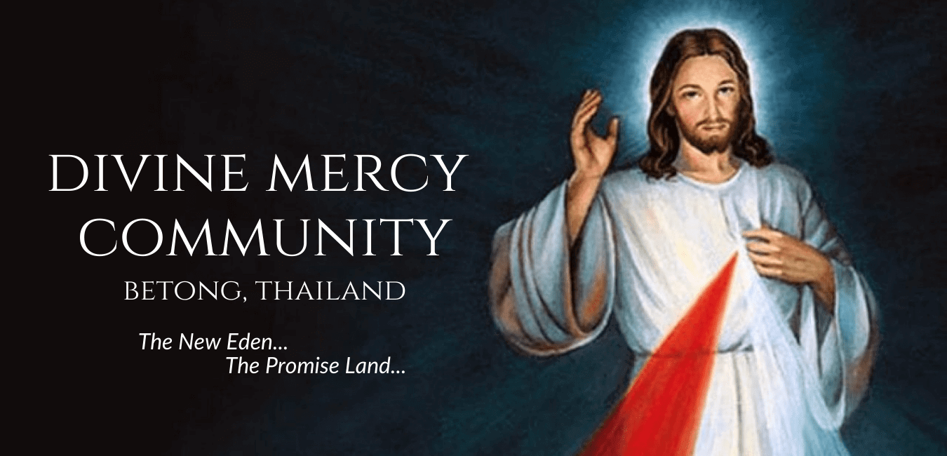 You are currently viewing Support the Divine Mercy Community